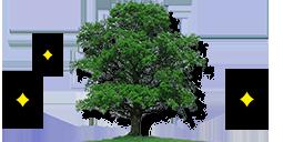 環境保護に関する方針